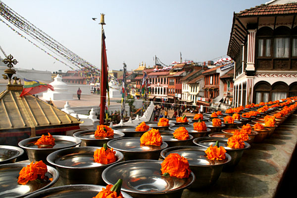 Tihar Fextival Nepal